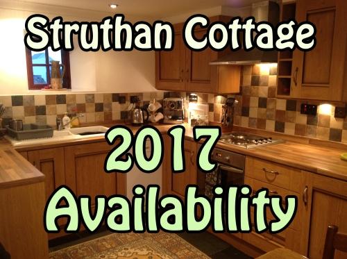 2017-availability