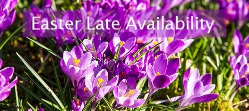 easter-late-availability